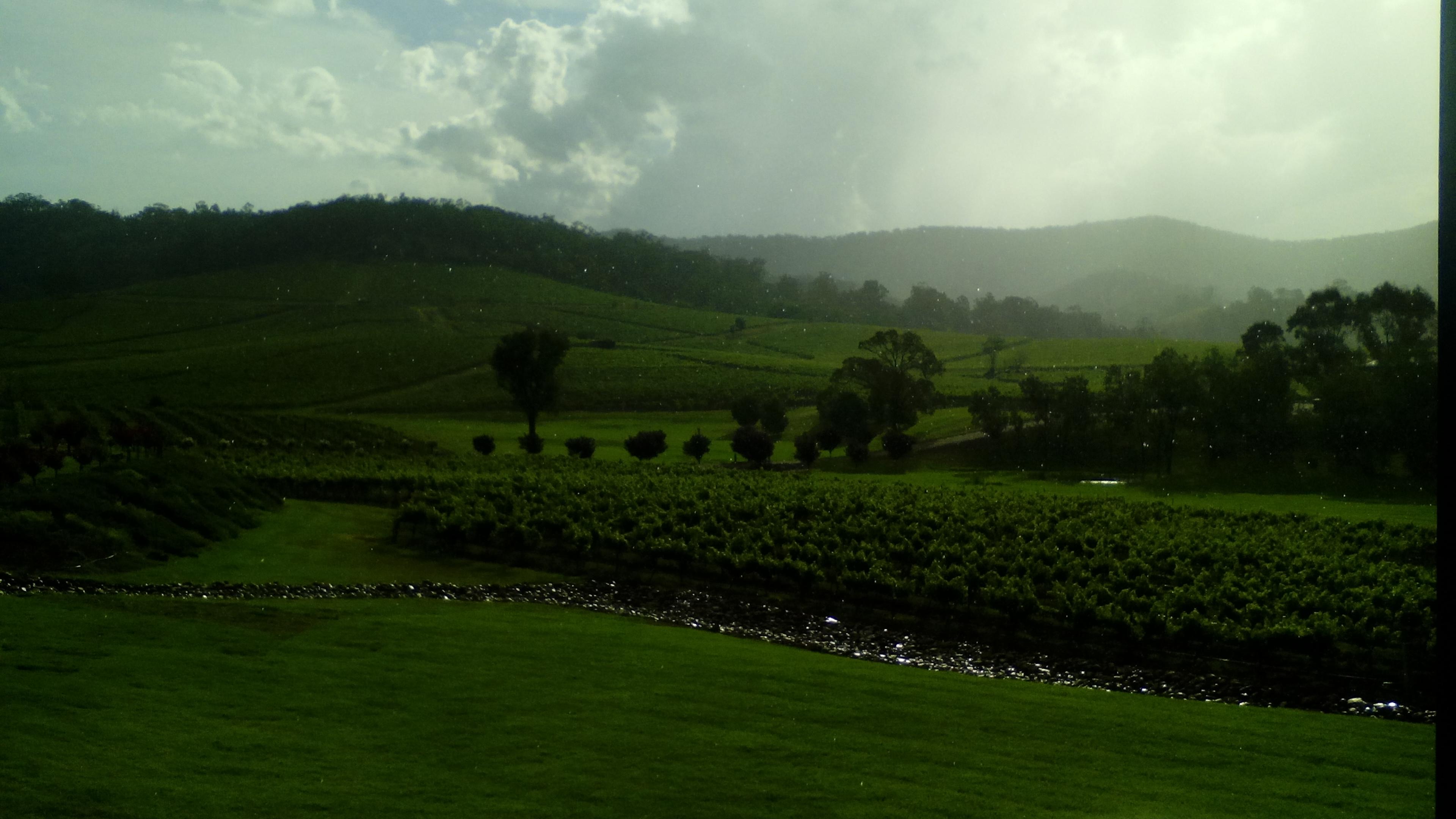 The-beautiful-Hunter-Valley-vineyards